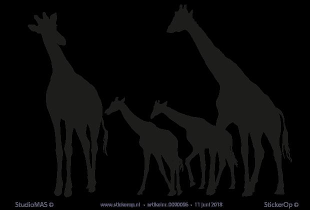 Muursticker Giraffe Kinderkamer.Muursticker Familie Giraf Voor De Babykamer
